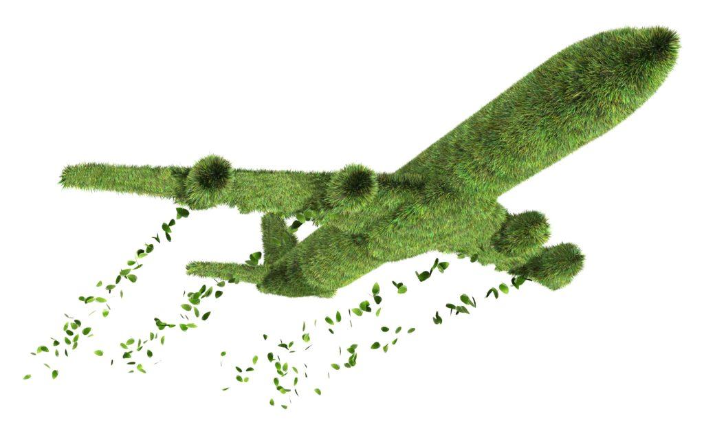 Green grass airplane